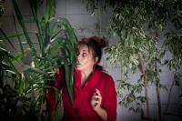 Ευαγγελία Μουμούρη - Ελένη ή Σούλα, 2017 (θέατρο)