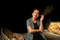 Νένα Μεντή - Ευτυχία Παπαγιαννοπούλου, 2015 (θέατρο)
