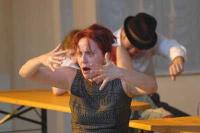 Θέμις Μπαζάκα - Ιστορίες από το δάσος της Βιέννης, 2008 (θέατρο)