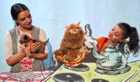 Ματίνα Δημητροπούλου - Μάρκος ο γάτος, 2016 (θέατρο)