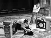 Ερρίκος Μηλιάρης - Ο κήπος του Ραπατσίνι, 2017 (θέατρο)