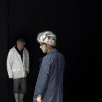 Χρήστος Λούλης - Παραλλαγές θανάτου, 2013 (θέατρο)