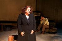 Ελένη Κοκκίδου - Πατρίδες, 2012 (θέατρο)