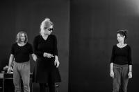 Έμιλυ Κολιανδρή - Τυραννόσαυροι ΡΕΞ, 2017 (θέατρο)