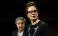 Μάγια Λυμπεροπούλου - Το πένθος ταιριάζει στην Ηλέκτρα, 2013 (θέατρο)