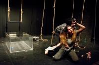 Γιάννης Μπισμπικόπουλος - Το τσίμπημα της σφήκας, 2016 (θέατρο)