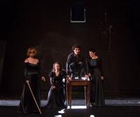 Άγγελος Τριανταφύλλου - Βυσσινόκηπος, 2015 (θέατρο)